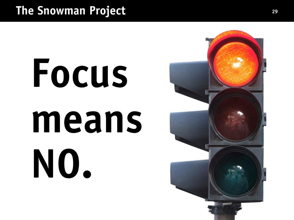 The Snowman Project Focus means NO. 29