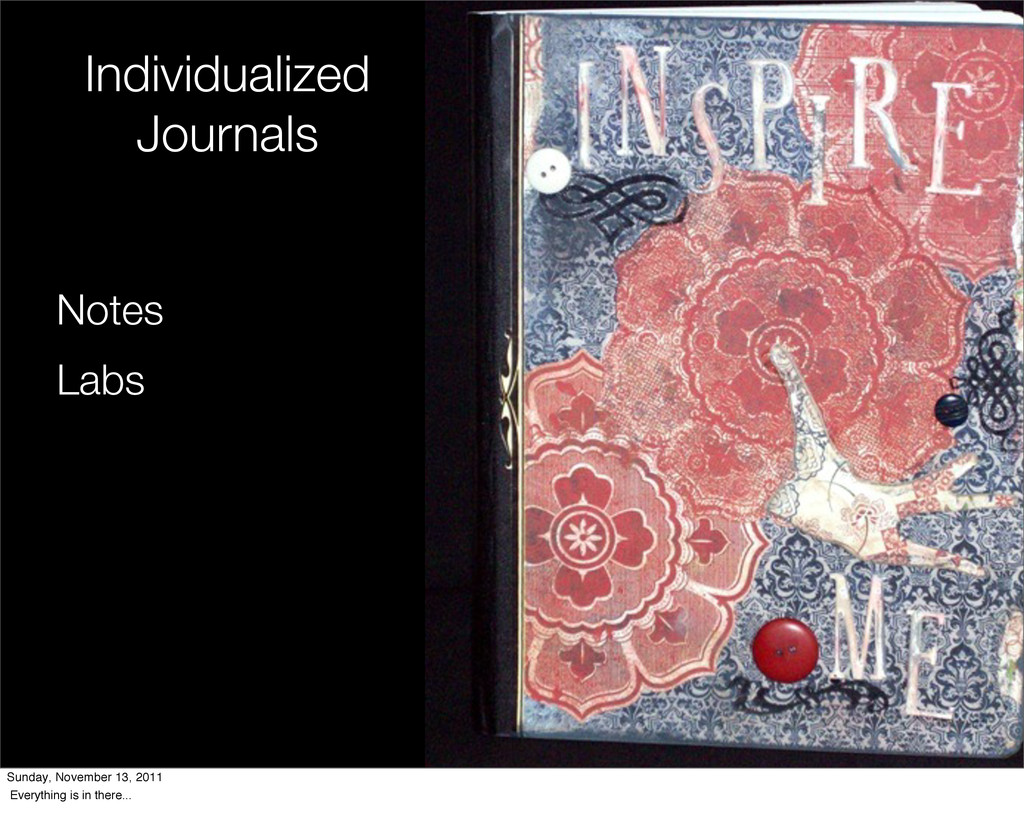 Individualized Journals Notes Labs Sunday, Nove...