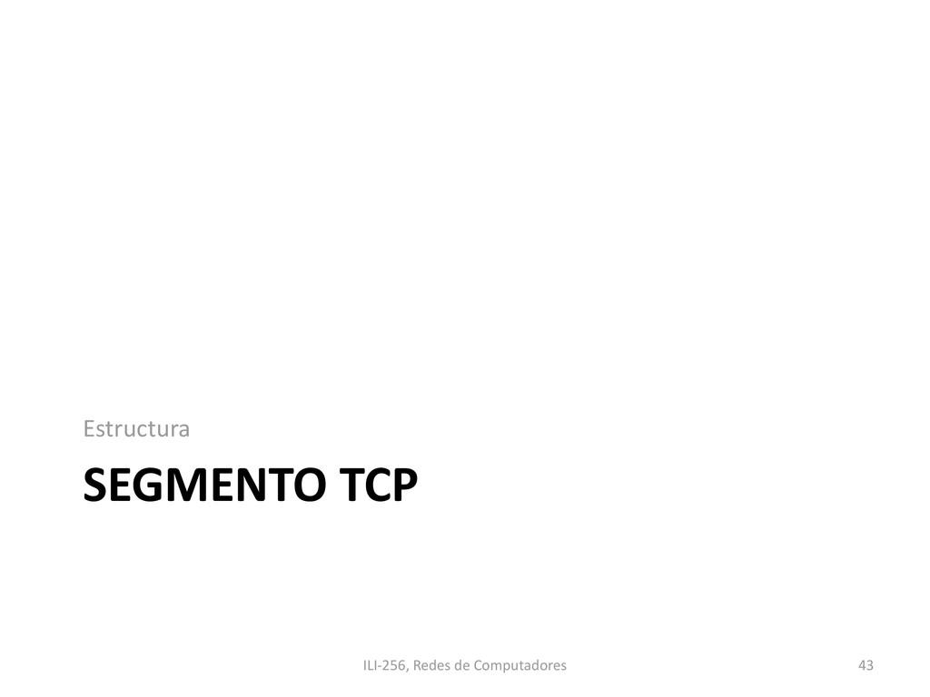 SEGMENTO TCP Estructura ILI-256, Redes de Compu...