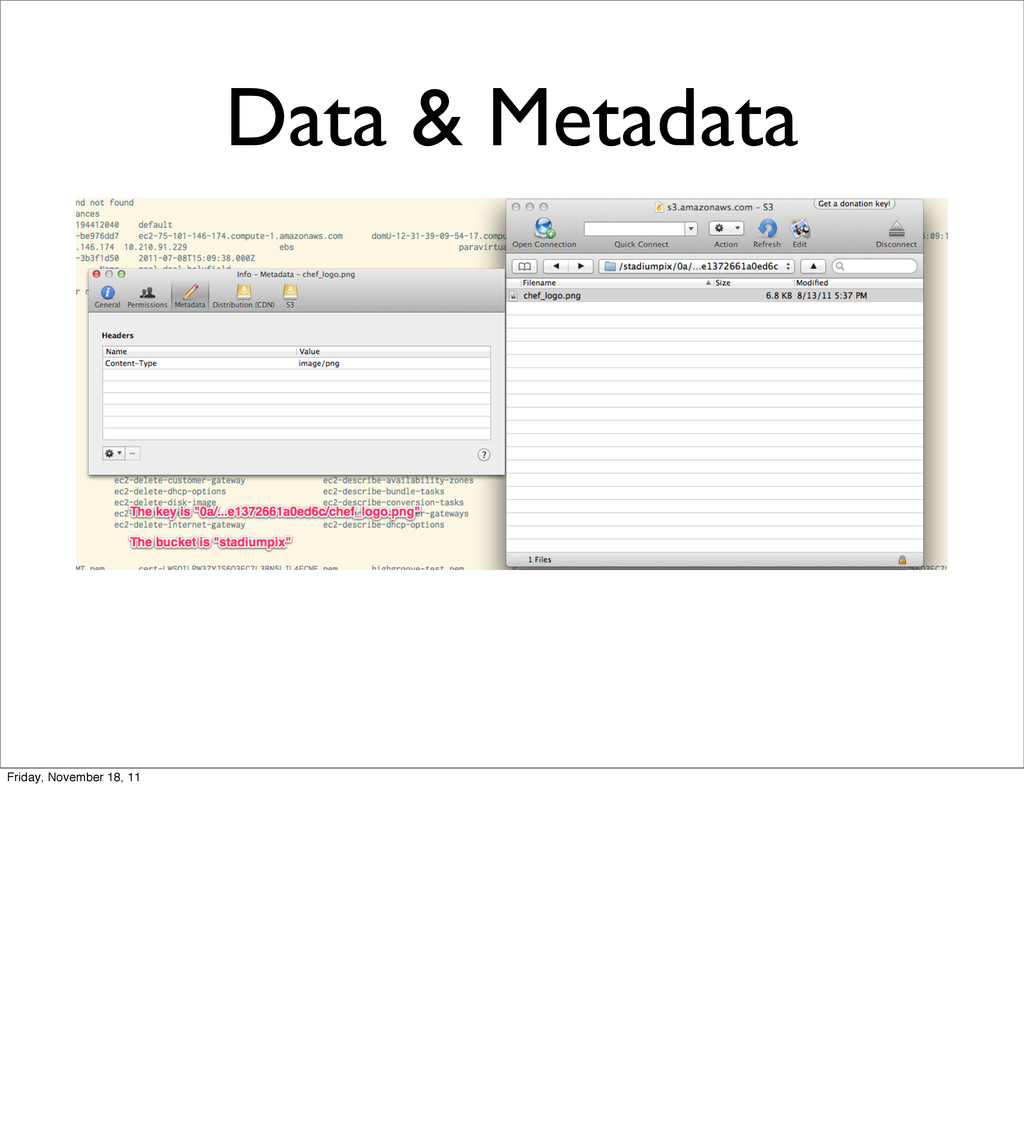 Data & Metadata Friday, November 18, 11