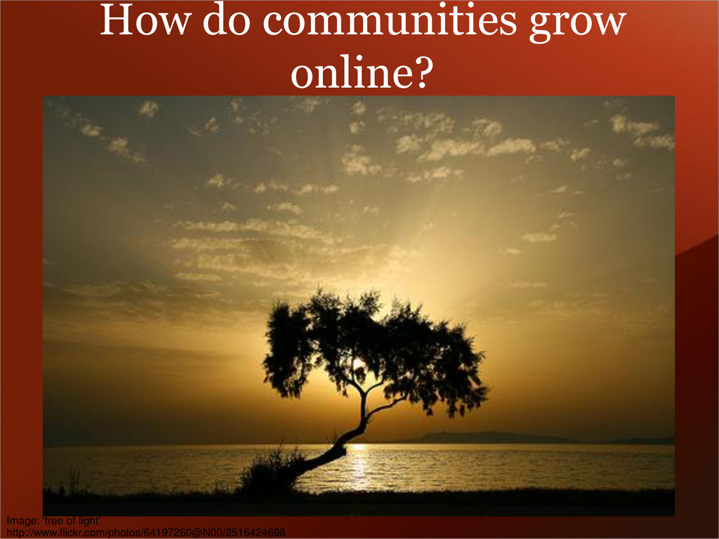 How do communities grow online? Image: 'tree of...