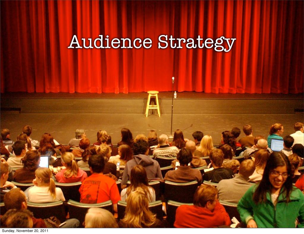 Audience Strategy Sunday, November 20, 2011