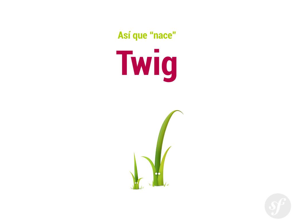 """Así que """"nace"""" Twig"""