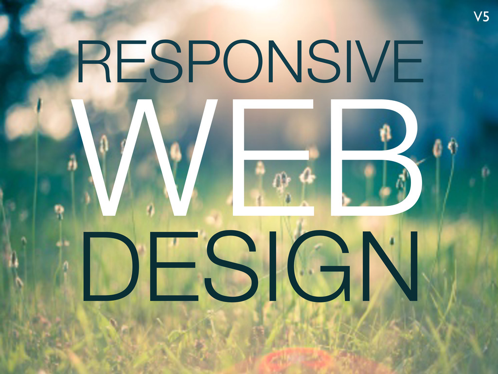 RESPONSIVE DESIGN WEB V5