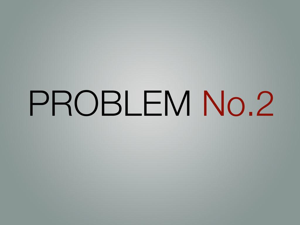 PROBLEM No.2