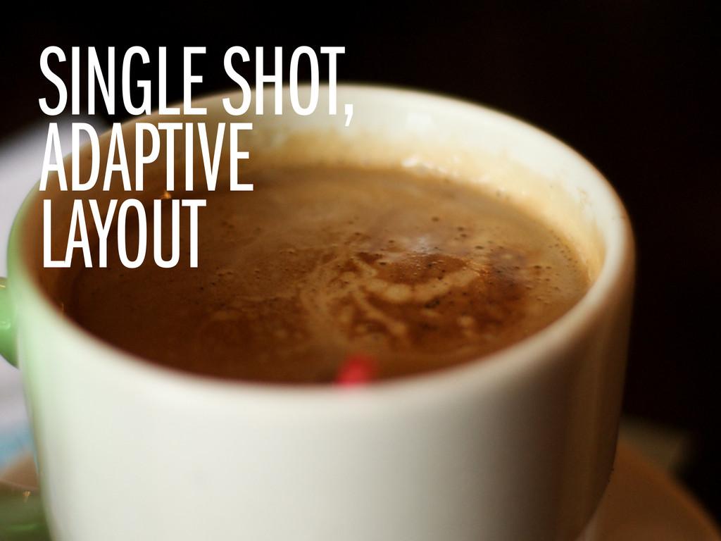 SINGLE SHOT, ADAPTIVE LAYOUT