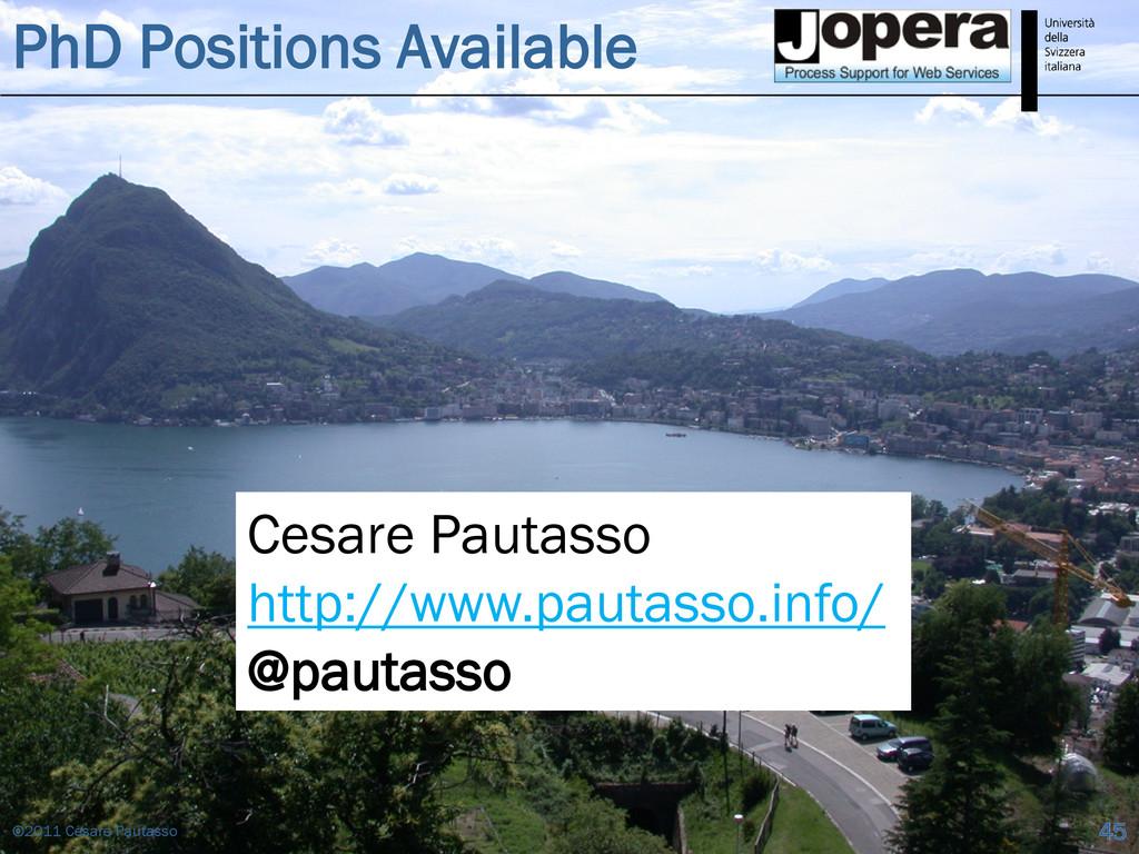 PhD Positions Available ©2011 Cesare Pautasso 4...