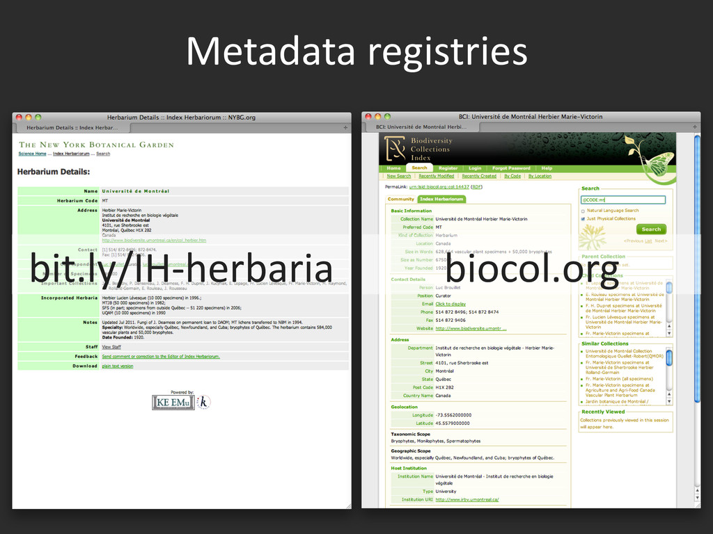 Metadata	