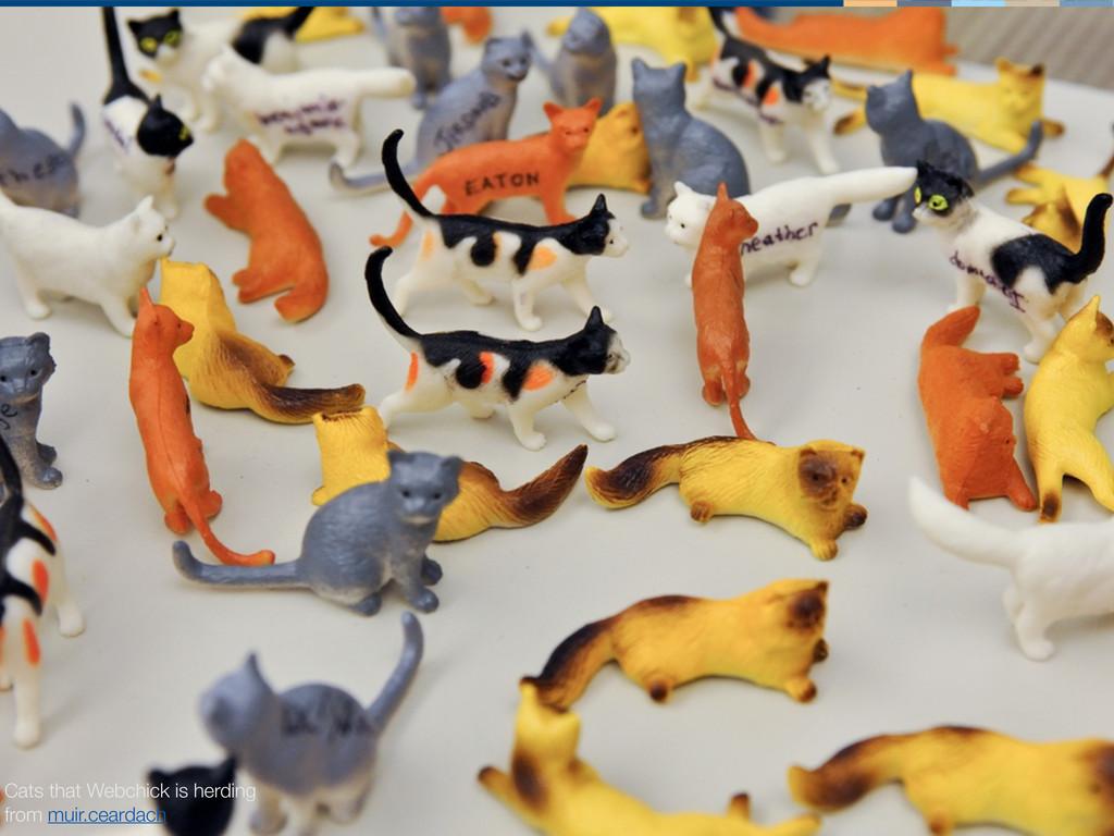 herding cats Cats that Webchick is herding from...