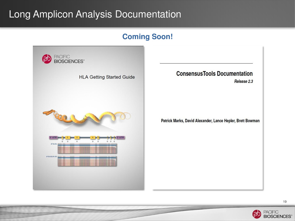 Long Amplicon Analysis Documentation 19 Coming ...