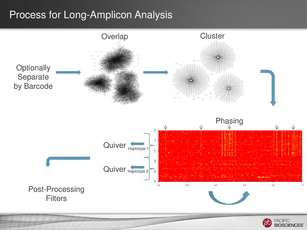 Process for Long-Amplicon Analysis Overlap Clus...