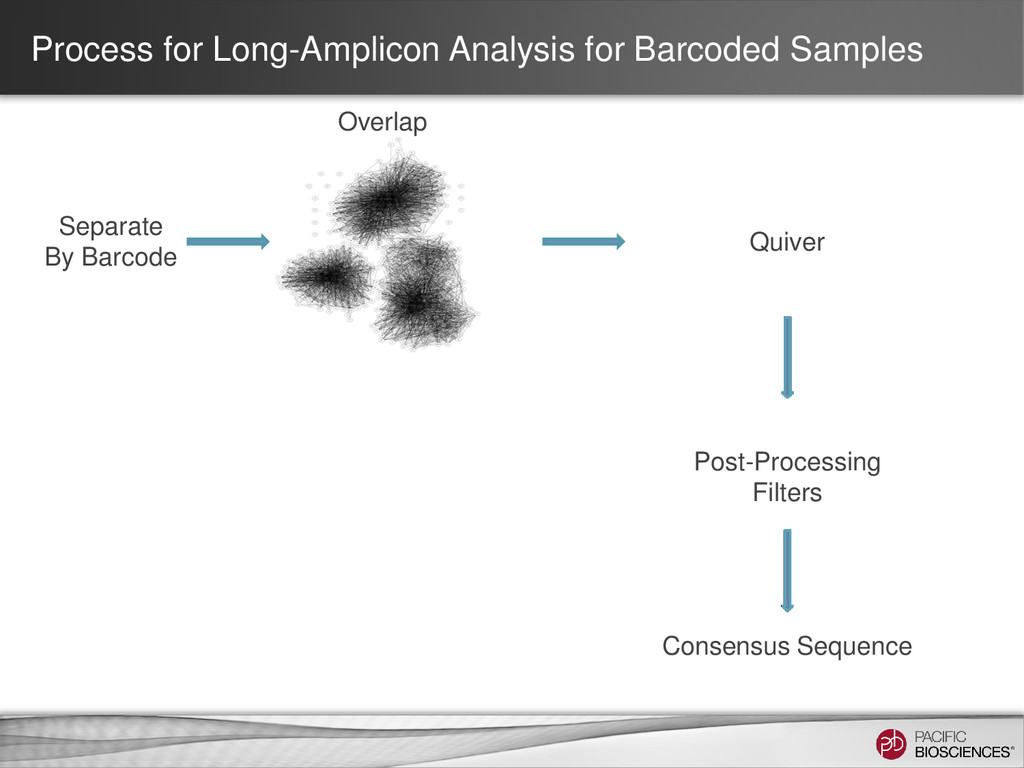 Process for Long-Amplicon Analysis for Barcoded...