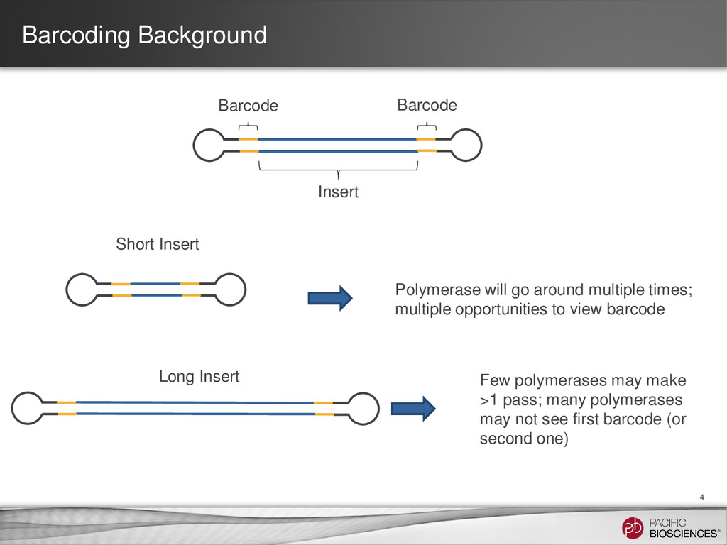 Barcoding Background 4 Insert Barcode Barcode S...