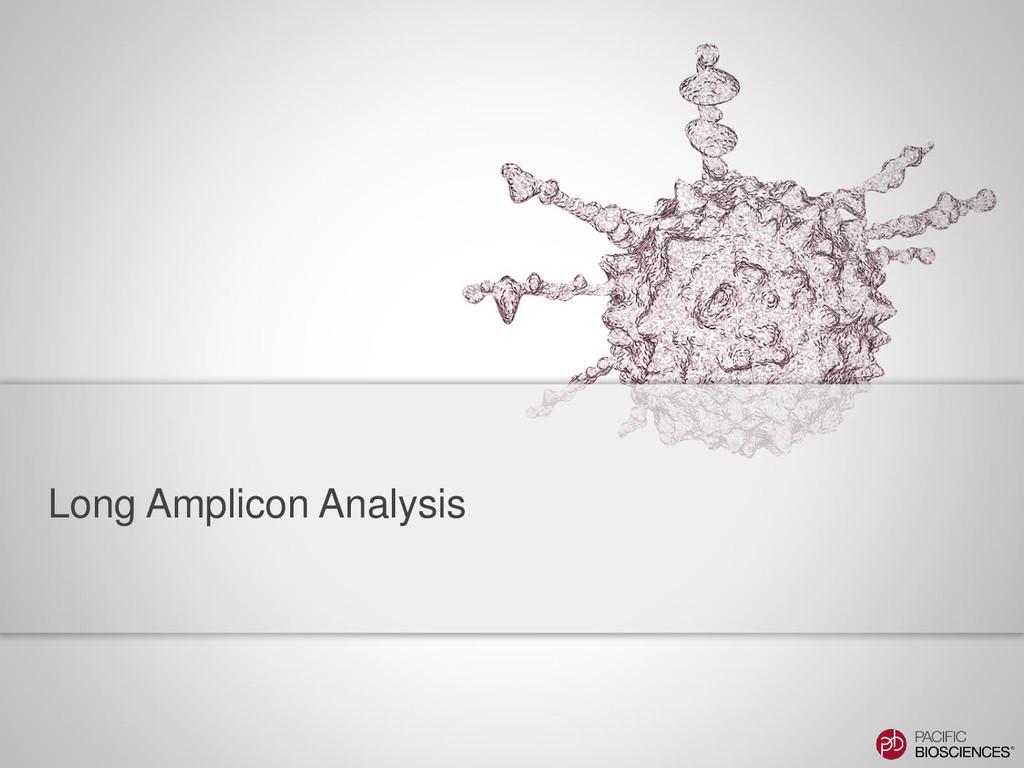 Long Amplicon Analysis