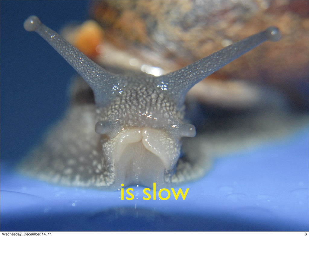 is slow 6 Wednesday, December 14, 11