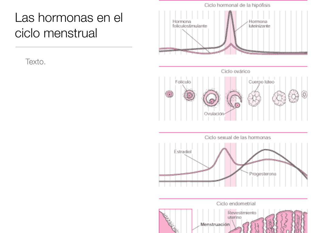 Las hormonas en el ciclo menstrual Texto.
