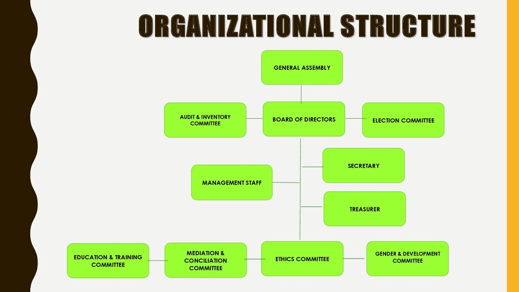 ORGANIZATIONAL STRUCTURE MANAGEMENT STAFF ELECT...