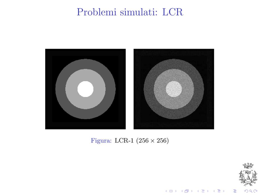 Problemi simulati: LCR Figura: LCR-1 (256 × 256)