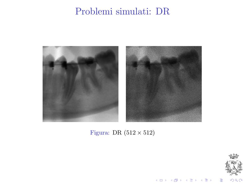 Problemi simulati: DR Figura: DR (512 × 512)