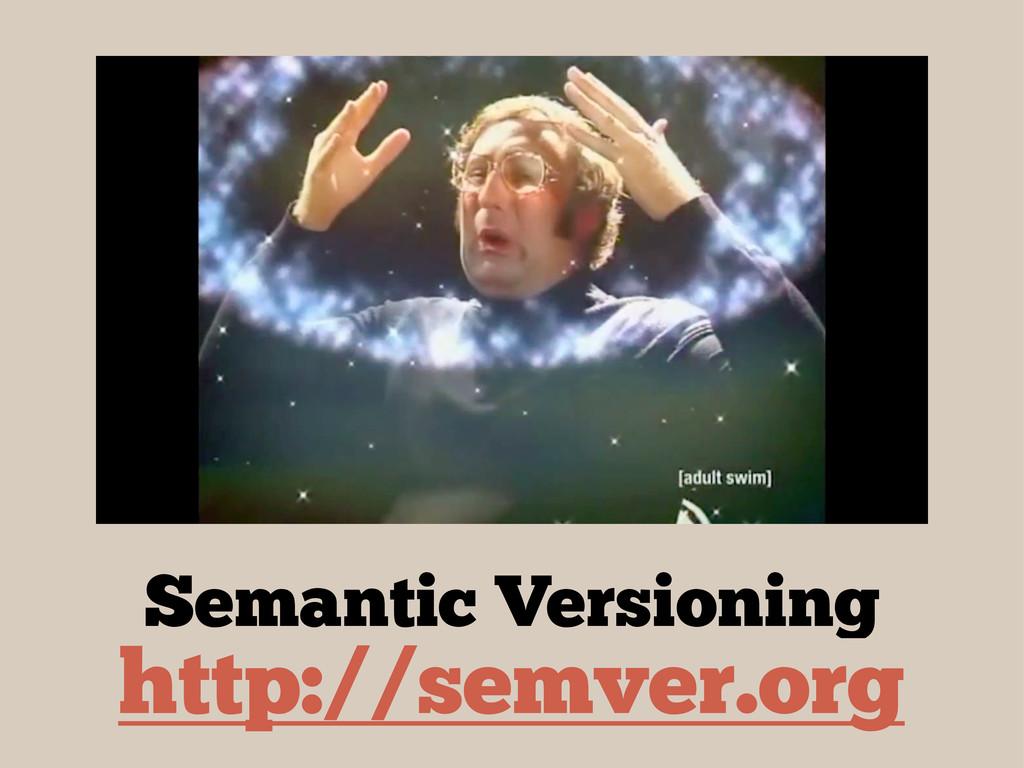 http://semver.org Semantic Versioning