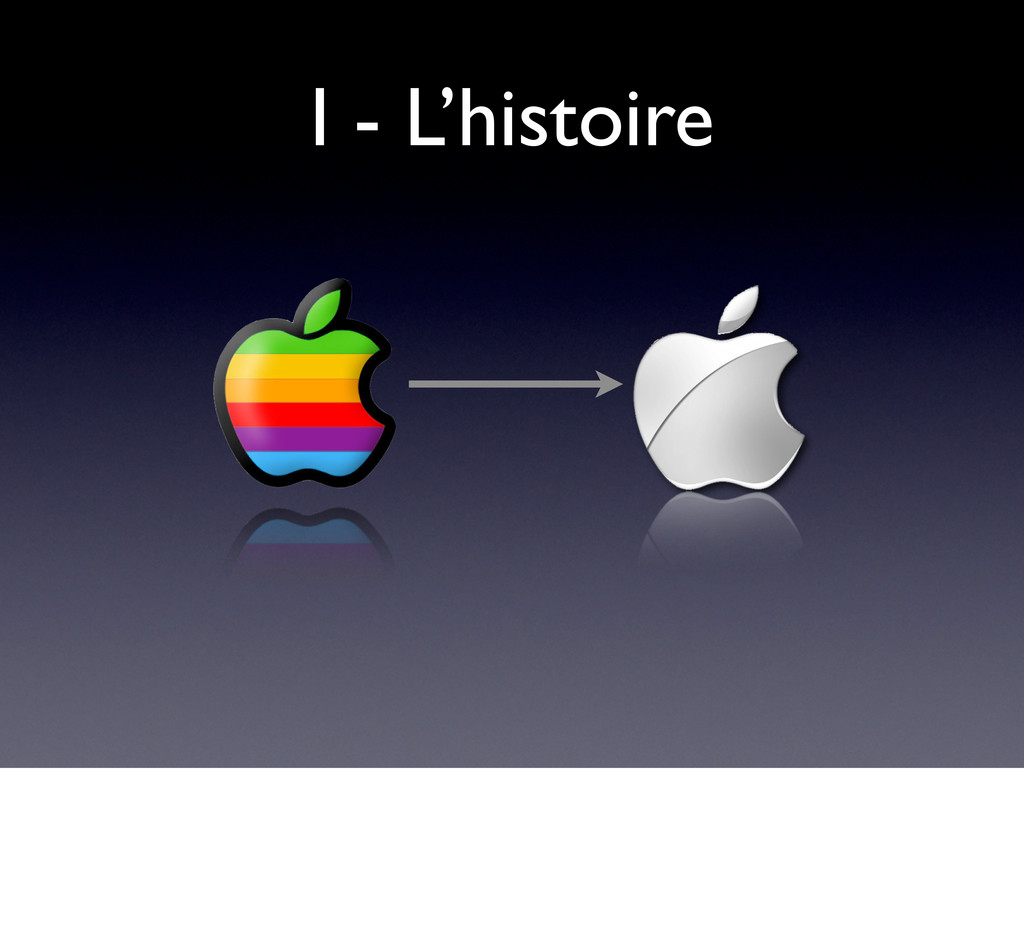 I - L'histoire