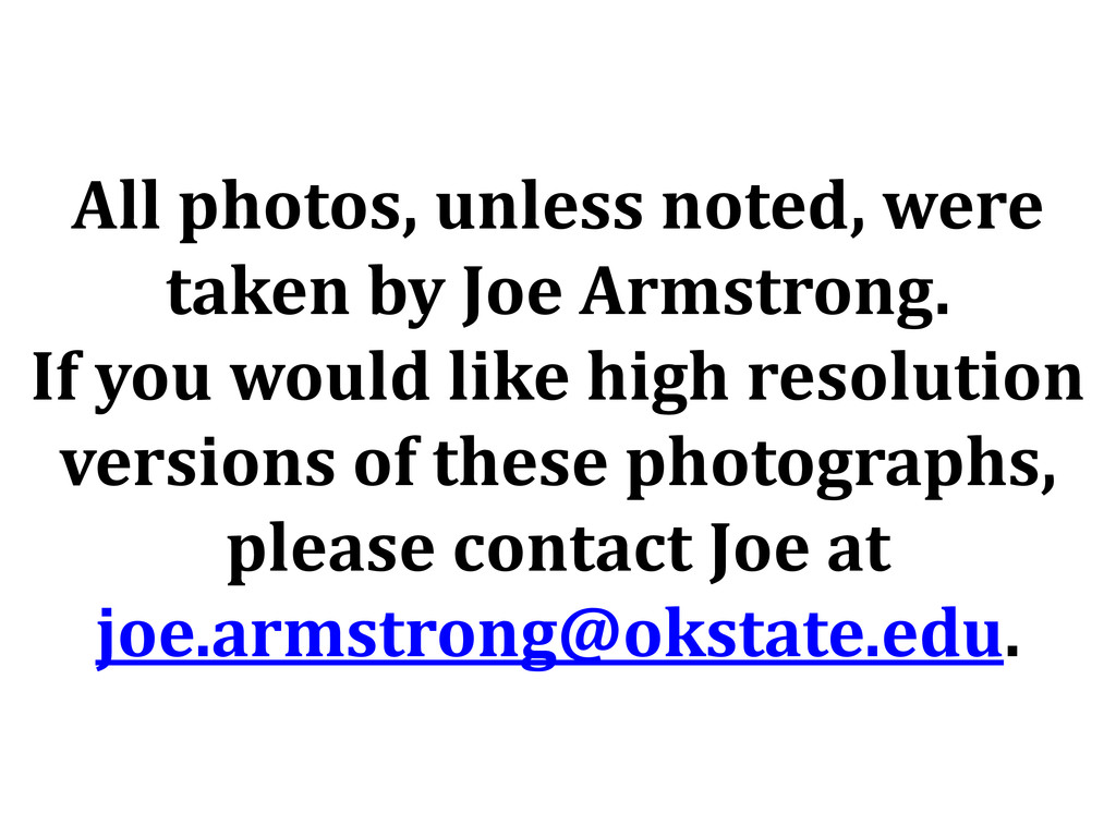 All photos, unless noted, were taken by Joe Arm...