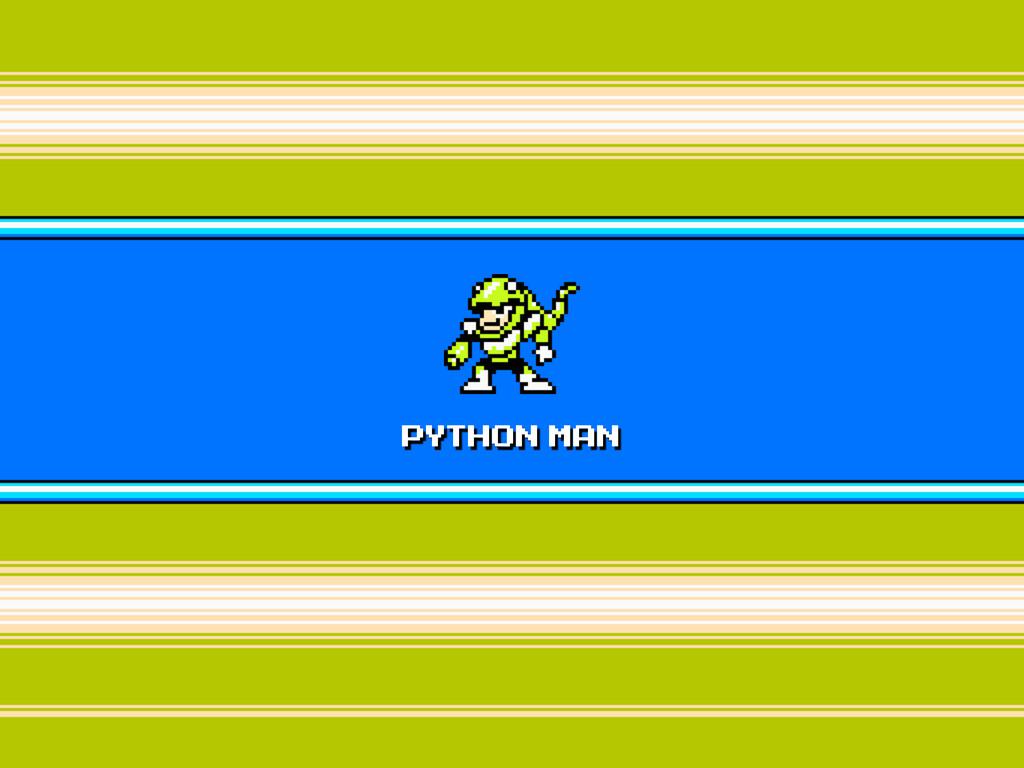 PYTHON MAN
