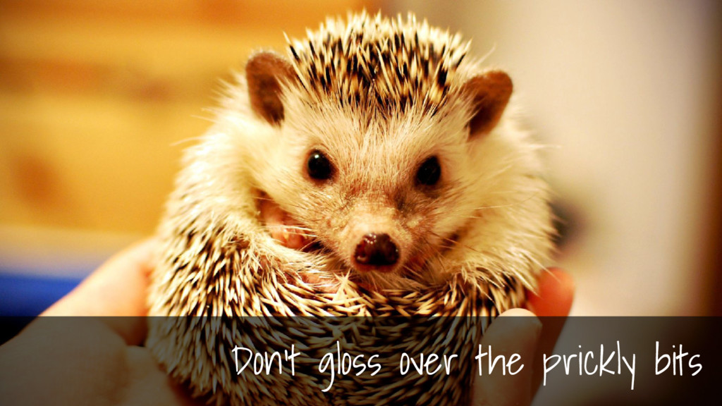 Don't gloss over the prickly bits