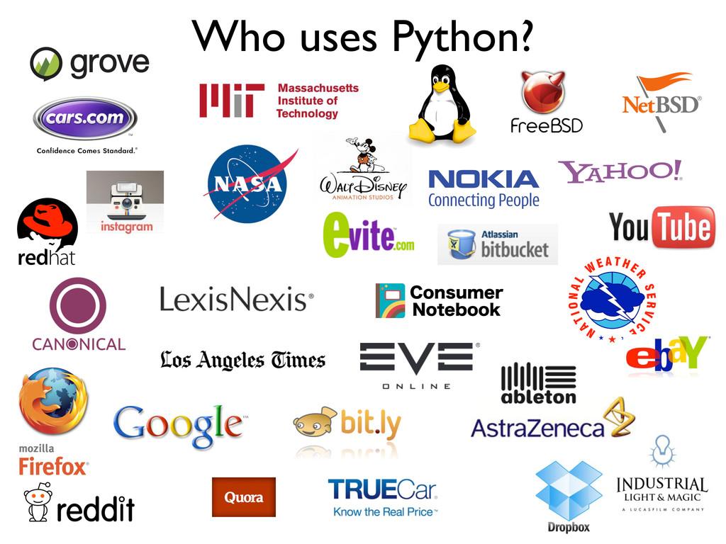 Who uses Python?