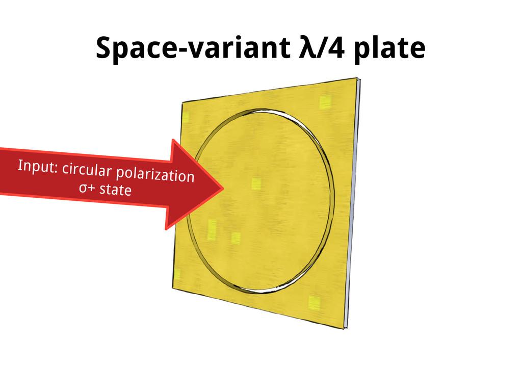 Space-variant λ/4 plate Input: circular polariz...