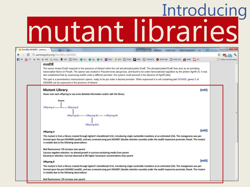 Introducing mutant libraries