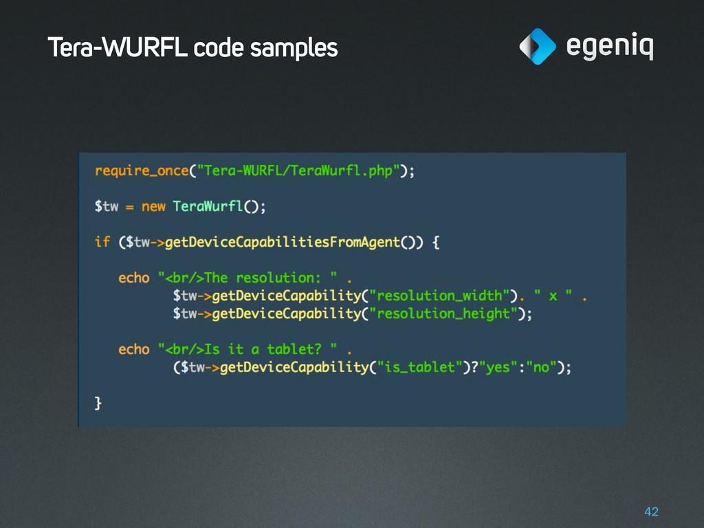 Tera-WURFL code samples 42
