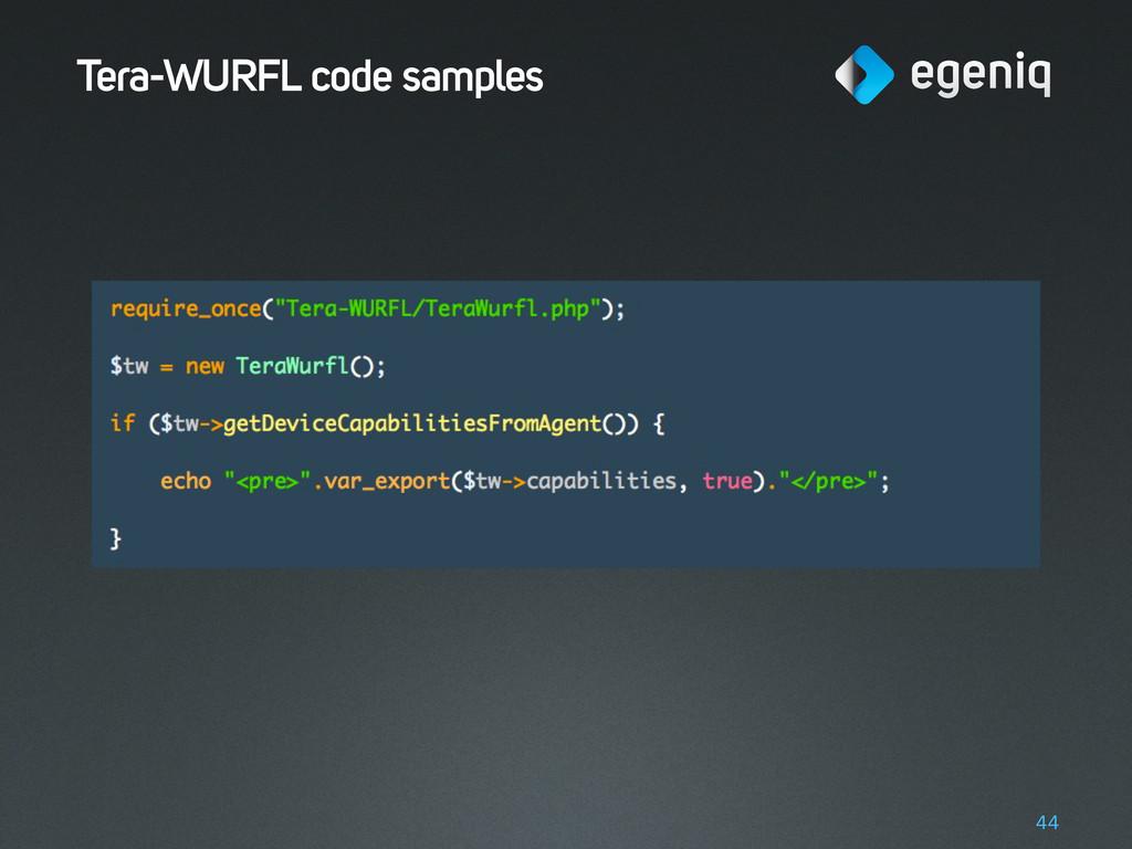 Tera-WURFL code samples 44