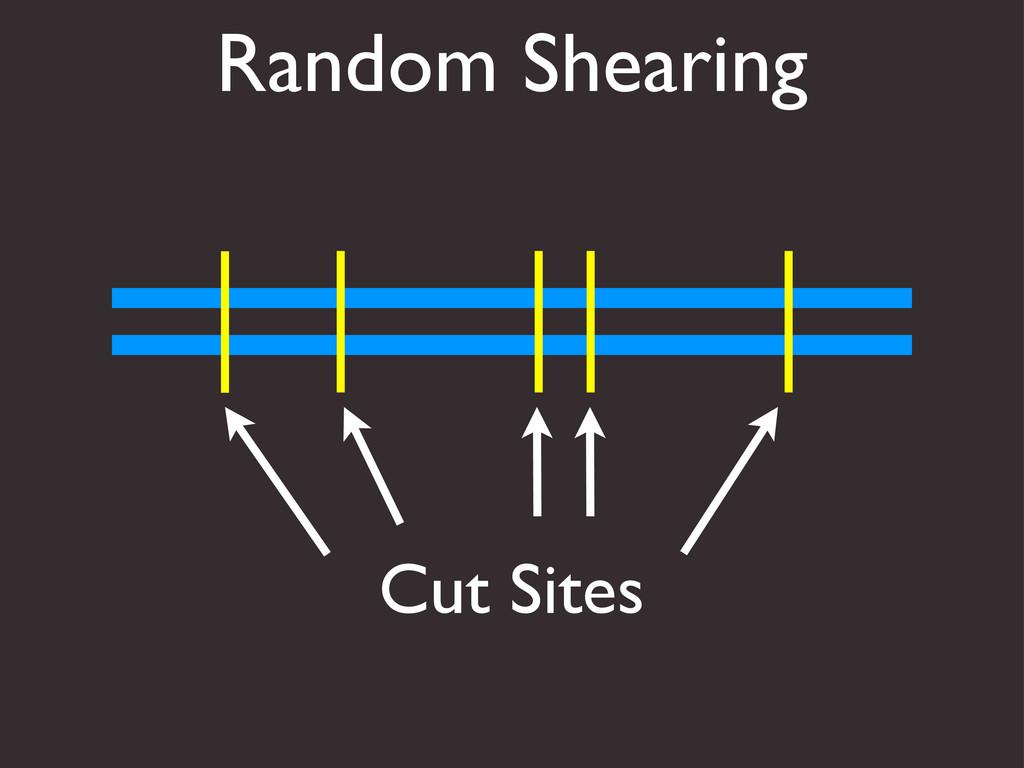 Random Shearing Cut Sites