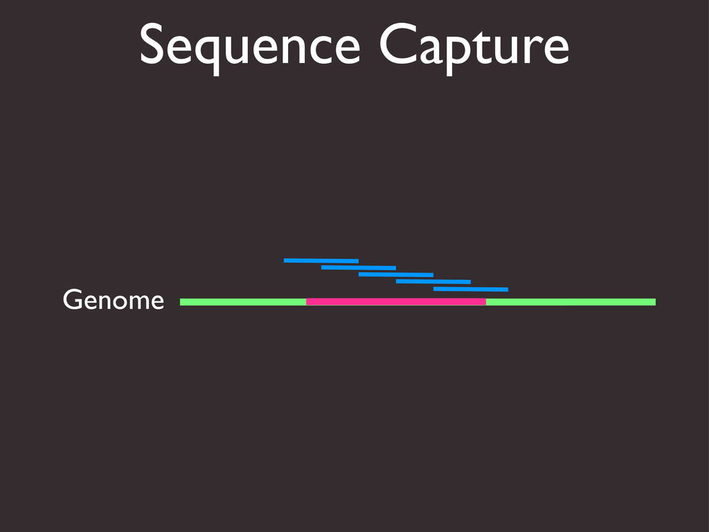 Sequence Capture Genome