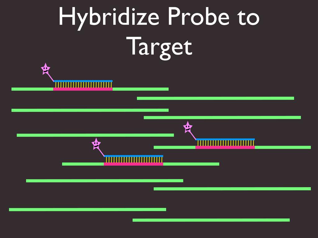 Hybridize Probe to Target
