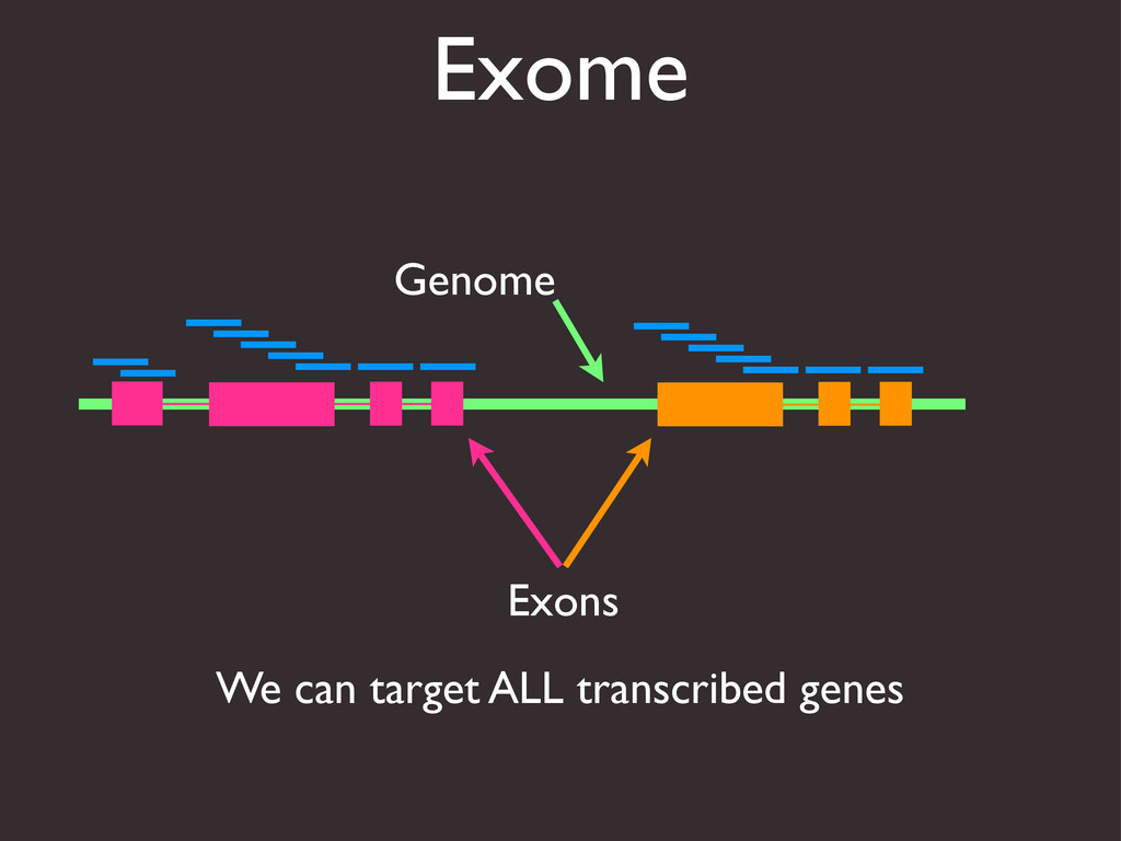 Exome Genome Exons We can target ALL transcribe...