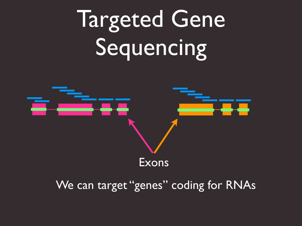 """Targeted Gene Sequencing Exons We can target """"g..."""