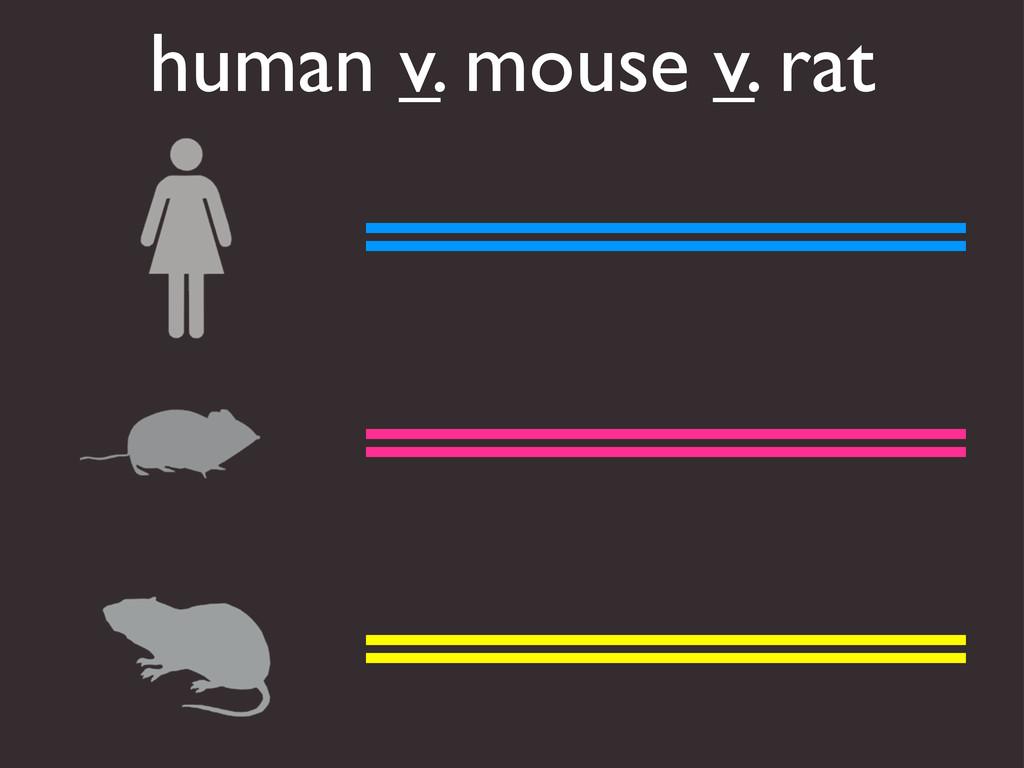 human v. mouse v. rat