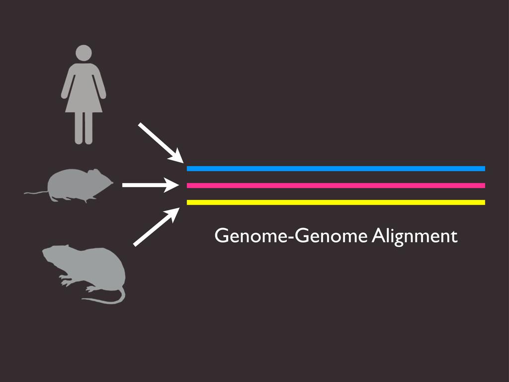 Genome-Genome Alignment