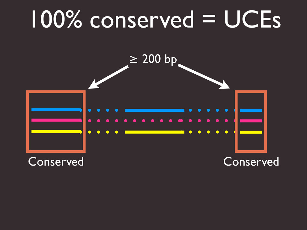 100% conserved = UCEs Conserved Conserved ≥ 200...