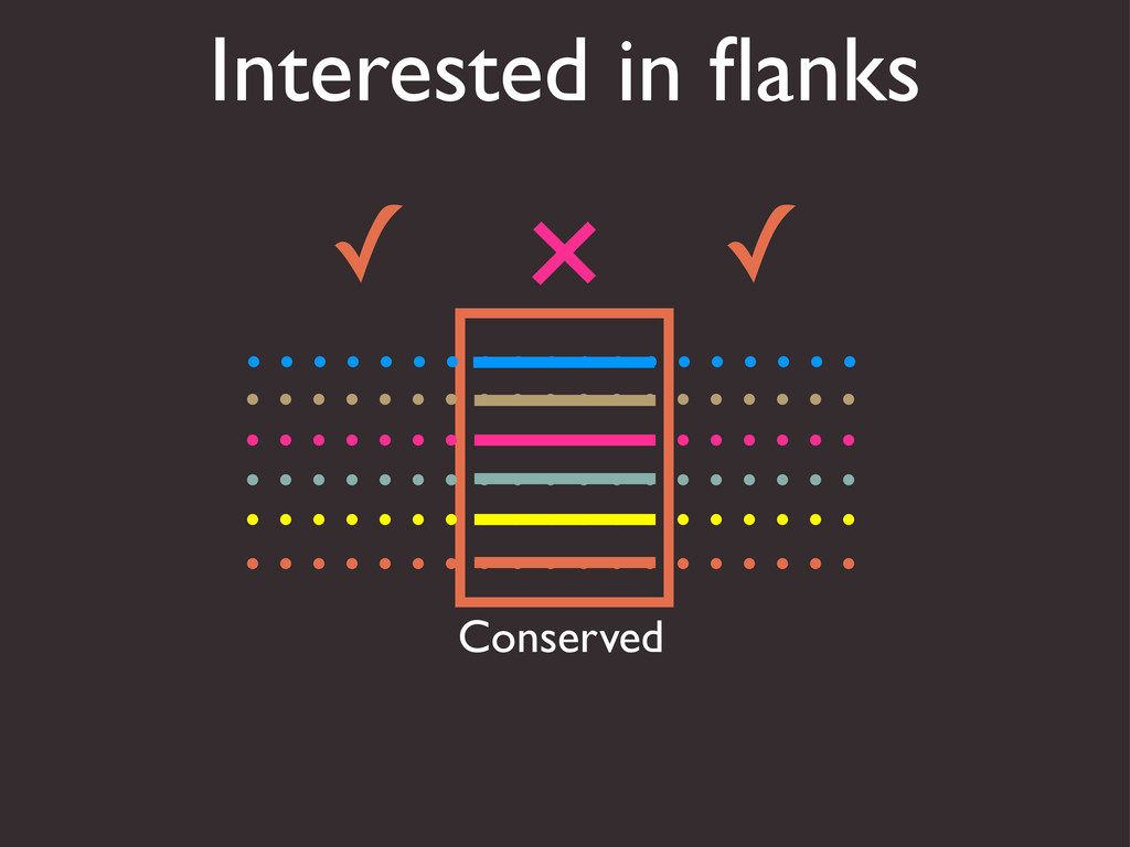 Interested in flanks Conserved ✓ ✓