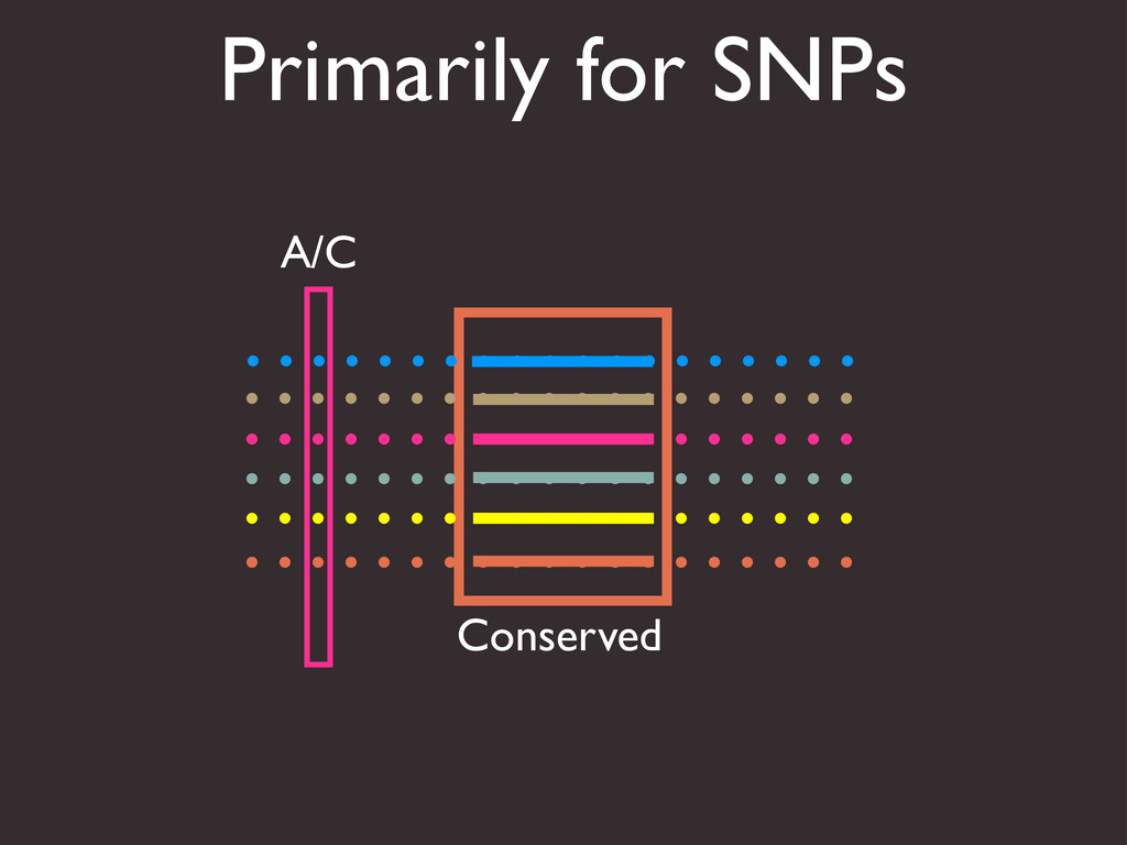 Primarily for SNPs Conserved A/C