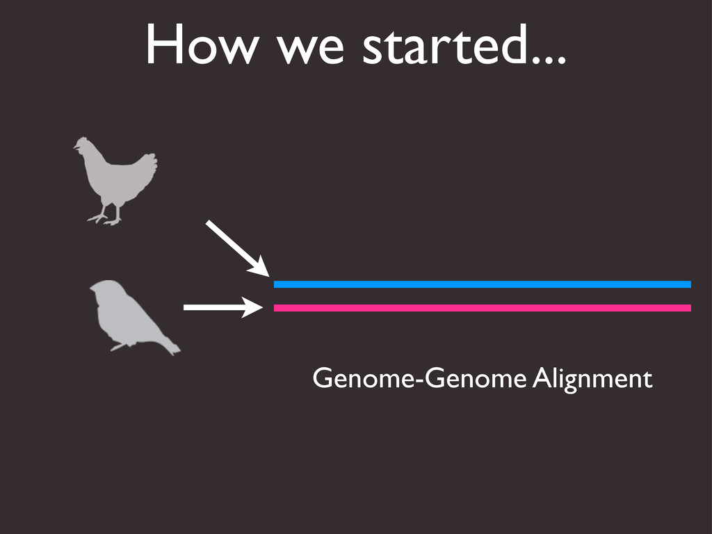 How we started... Genome-Genome Alignment