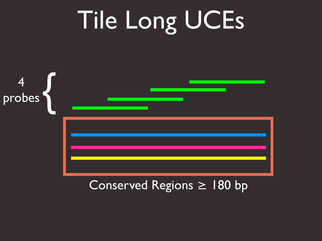Tile Long UCEs Conserved Regions ≥ 180 bp { 4 p...