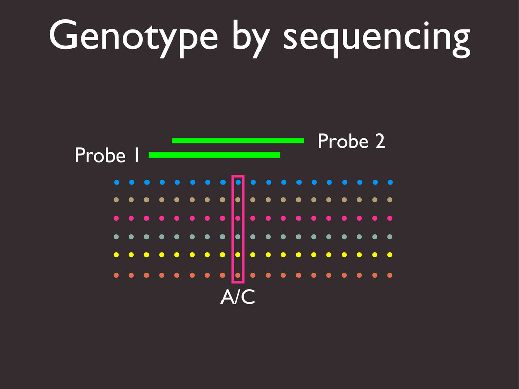 Genotype by sequencing A/C Probe 1 Probe 2