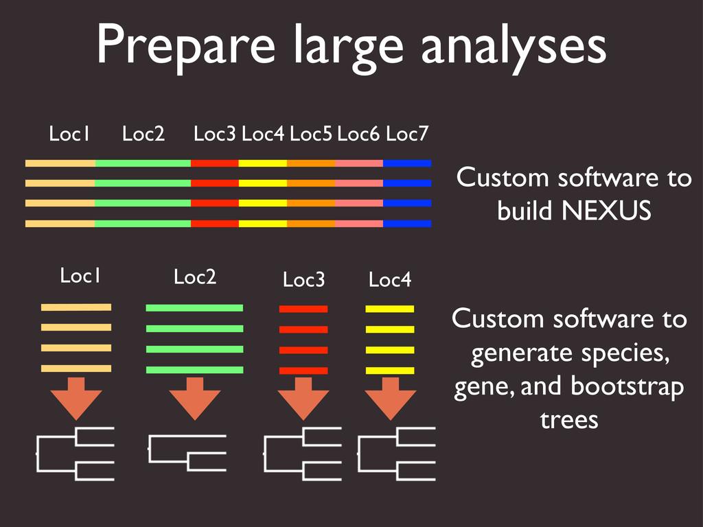 Prepare large analyses Loc1 Loc2 Loc3 Loc4 Loc5...