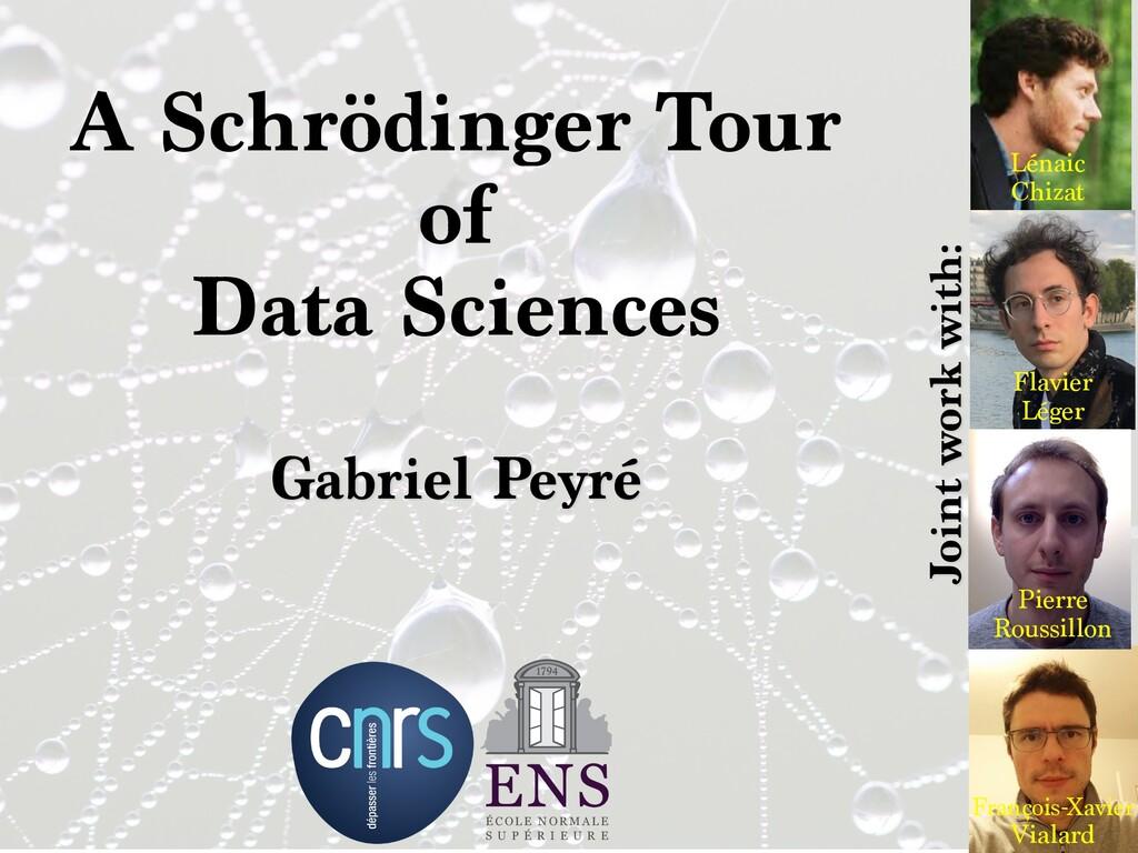 A Schrödinger Tour   of   Data Sciences Gabriel...