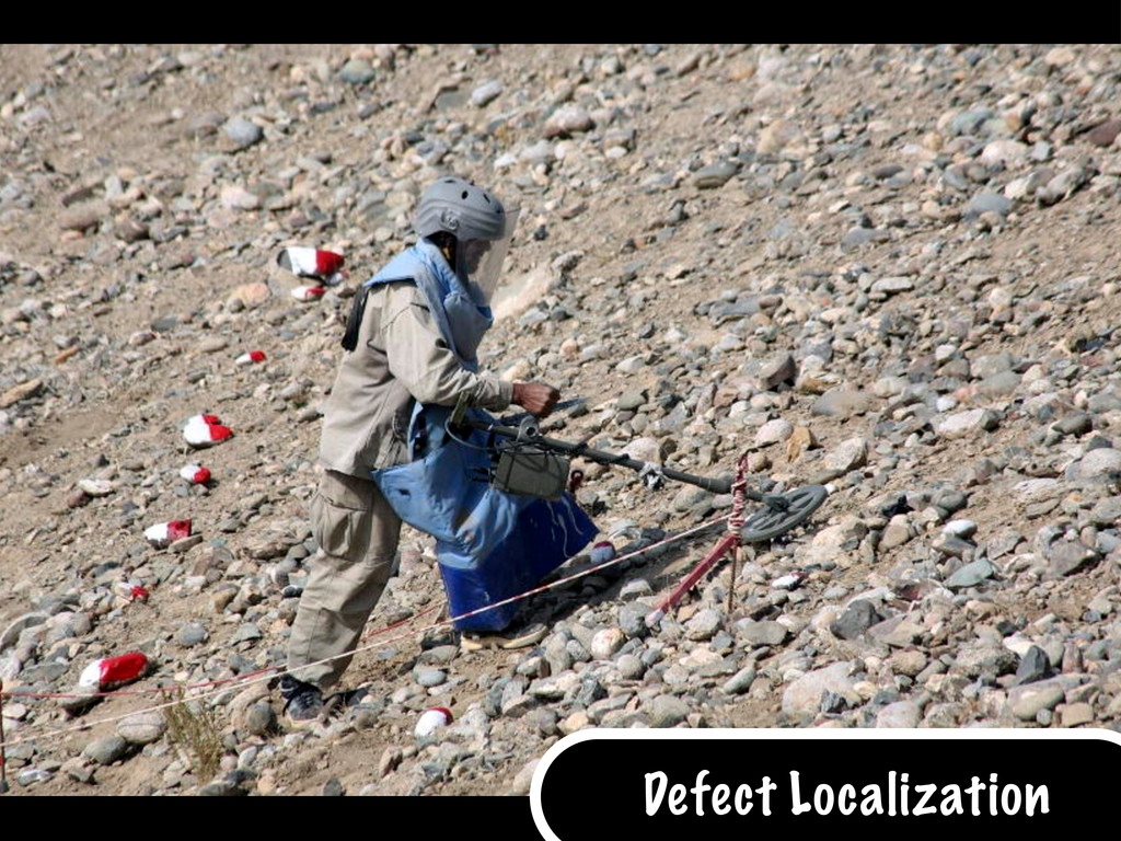 Defect Localization