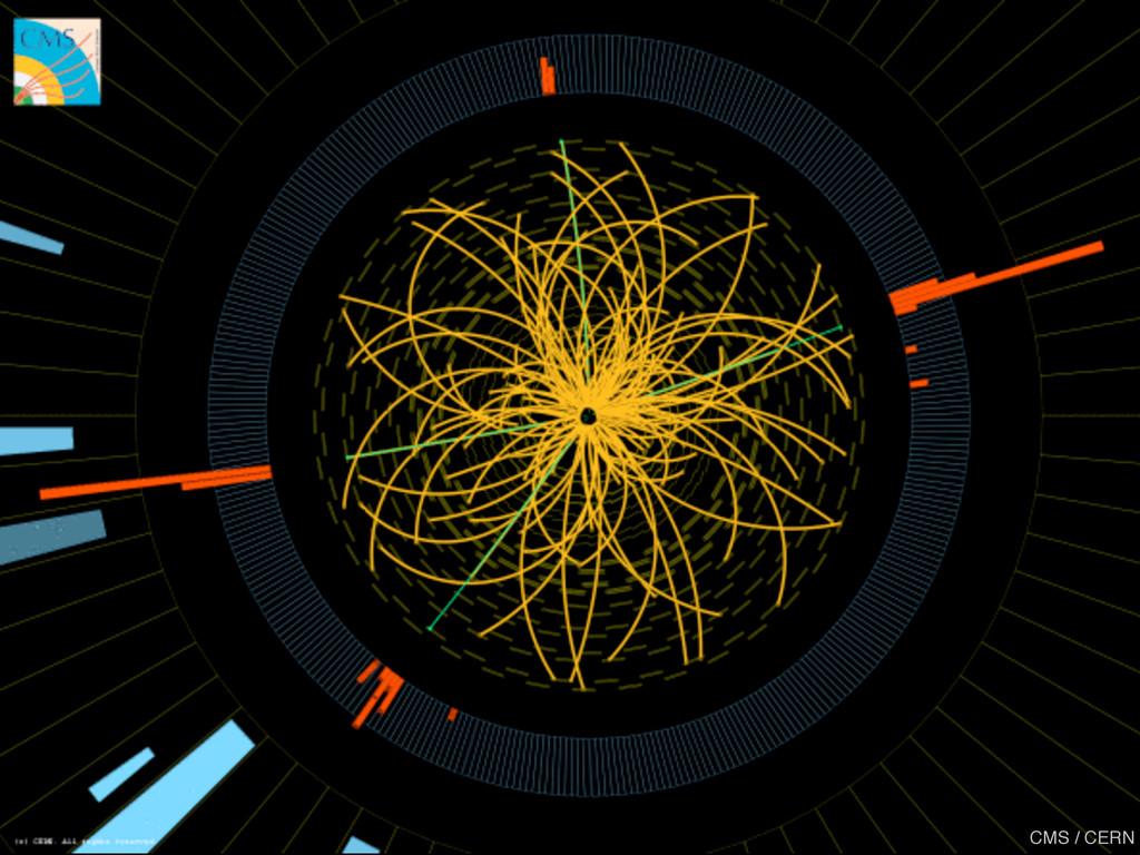 CMS / CERN